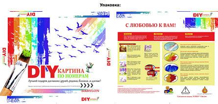 Картина за номерами Babylon Метелики і червоні орхідеї 30*40 см арт.VK013, фото 2