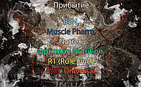 Поступление: BSN, Muscle Pharm, Nutrex, Optimum Nutrition, R1 (Rule One), SAN, Universal.