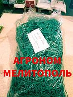 Гумки для зелені ПОЛЬЩА 30,40 х 1.5 мм