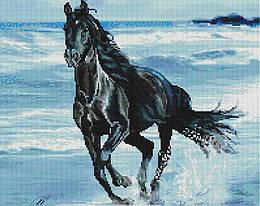 """Алмазная мозаика """"Чёрный скакун"""" (лошадь, конь, животные)"""