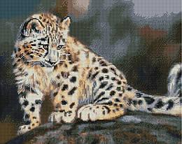 """Алмазная мозаика """"Нежность ангелов"""" (Леопард, Хищник, Животные)"""