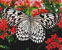 "Алмазная мозаика ""Бабочка на цветах"" (бабочка, на подарок, для женщины)"