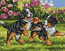 """Алмазная мозаика """"Щенки с мячиком"""" (щенки, собака, животные)"""