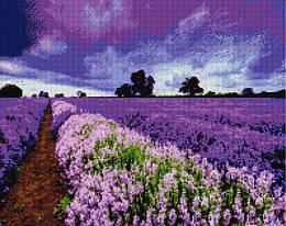 "Алмазная мозаика ""Поле лаванды"" (лаванда, поле, цветы)"