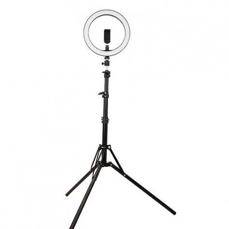 Кільцева світлодіодна лампа 26см на штативі 2 метри, фото 2