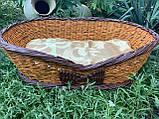Лежанка для собаки з бортиками (подушка в подарунок), фото 4