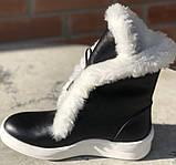 Ботинки с мехом женские зимние кожаные от производителя модель Ф119, фото 3
