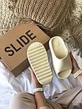 Тапки / Шльопанці Adidas Yeezy Slide Bone, фото 5
