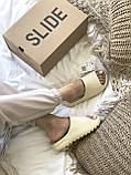 Тапки / Шльопанці Adidas Yeezy Slide Bone, фото 9