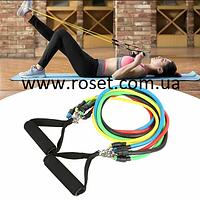Набор эспандеров для фитнеса Power Bands, 5 резиновых жгутов Бубновского