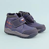 Детские демисезонные ботинки для мальчика тм Tom.M размер 22,23,24,25