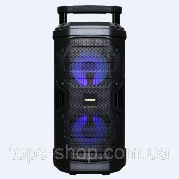 Портативна колонка з мікрофонами Temeisheng SL208-22 160W (USB/Bluetooth/Акумулятор/260W)