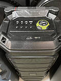 Портативна колонка з мікрофонами Temeisheng SL208-22 160W (USB/Bluetooth/Акумулятор/260W), фото 2