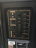 Портативна колонка з мікрофонами Temeisheng SL208-22 160W (USB/Bluetooth/Акумулятор/260W), фото 6
