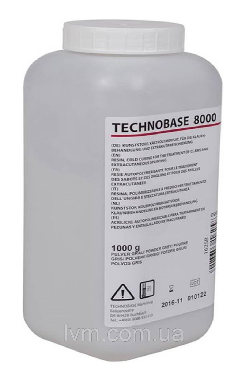 Клей - порошок 1кг Technobase 8000, для приклеивания деревянных колодок (Германия) ОРИГИНАЛ !