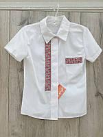 Котонові блузка для дівчаток. 146-158 зростання