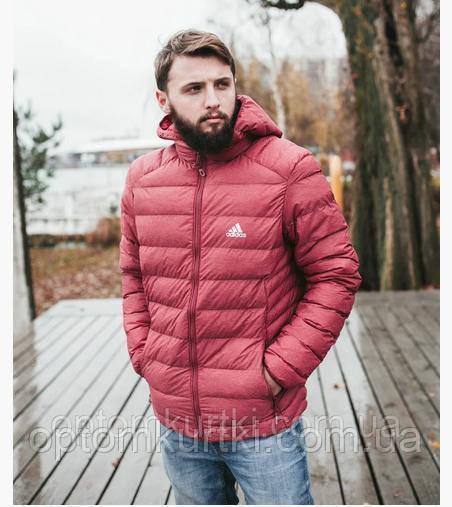 Осенние куртки.
