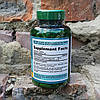 Натуральная добавка Puritan's Pride Green Tea Exctract Зеленый Чай 315 мг200 капсул, фото 2