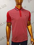 Мужская футболка Поло,Батал, MСL . PSL-26835. Размеры:  2XL(2),3XL,4XL., фото 3