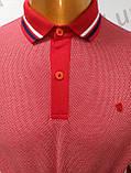 Мужская футболка Поло,Батал, MСL . PSL-26835. Размеры:  2XL(2),3XL,4XL., фото 7