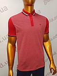 Мужская футболка Поло,Батал, MСL . PSL-26835. Размеры:  2XL(2),3XL,4XL., фото 4