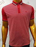 Мужская футболка Поло,Батал, MСL . PSL-26835. Размеры:  2XL(2),3XL,4XL., фото 5