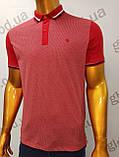 Мужская футболка Поло,Батал, MСL . PSL-26835. Размеры:  2XL(2),3XL,4XL., фото 6