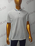 Мужская футболка Поло,Батал, MСL . PSL-26835(b). Размеры:  2XL(2),3XL,4XL., фото 3