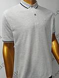 Мужская футболка Поло,Батал, MСL . PSL-26835(b). Размеры:  2XL(2),3XL,4XL., фото 6