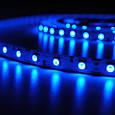 Светодиодная LED лента 5050 Голубая RW, фото 3