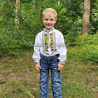 Вишиті сорочки для хлопчиків (МВ-301хл)