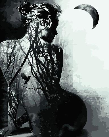 Картина за номерами Душа жінки 40х50 см Art Story (AS0752)