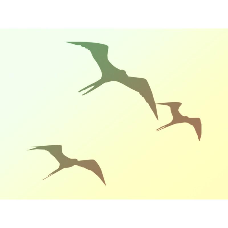 "Наліпка ""Чайки"" / Виниловая наклейка ""Чайки"""