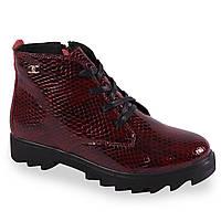 Комфортные женские ботинки (лаковые, бордовые, демисезонные, на платформе, на каблуке, на шнуровках, на замке)