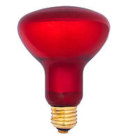 Лампа (червона) 100W