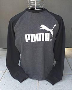 Мужской Свитшот. Puma  Мужская одежда. Мужской свитшот Пума черный.