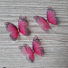 Бабочки из шифона. Капустница малиновая с черными рисунком.