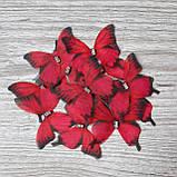 Бабочки из шифона. Большая малиновая с черными  острыми кончиками.., фото 2