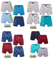 Детские трусы-шорты для мальчика (4 шт.) набор размер 28,30,32,34 Gabbi.