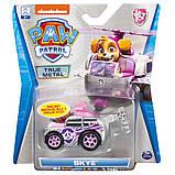 Paw Patrol Скай с автомобилем Die Cast, SM16782-14, фото 2