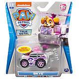 Paw Patrol Скай с автомобилем Die Cast, SM16782-14, фото 5