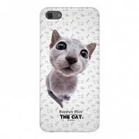 Qual for iPhone 5 THE CAT Russian Blue + пленка и наклейка на кнопку Home