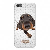 Qual for iPhone 5 THE DOG Dachshund + пленка и наклейка на кнопку Home (AR-QL1111DH)
