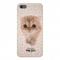 Qual for iPhone 5 THE CAT Chinchilla + пленка и наклейка на кнопку Home (QL1110CH)