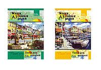 Бумага для акварели  А3 10 листов в папке (200г/м2) ПА3210 /1/ (ПА3210)
