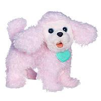 Интерактивный щенок FurReal Friends Walkin Puppies Pretty Poodle Toy Plush, фото 1