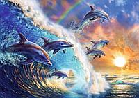 Картина за номерами Дельфіни Y5743 Вектор 40х50см в коробці, расскраска по номерам животные