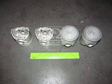 Поршень цилиндра ВАЗ 2101 (76,8) (2-й рем. размер)М/К | АвтоВАЗ