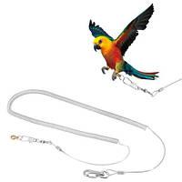 Антиулетайка для попугаев и птиц, 5м