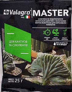 Добриво Мастер для кактусів та сукулентів 25г